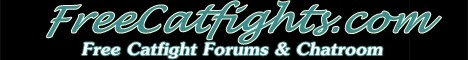 Free Catfight Forums